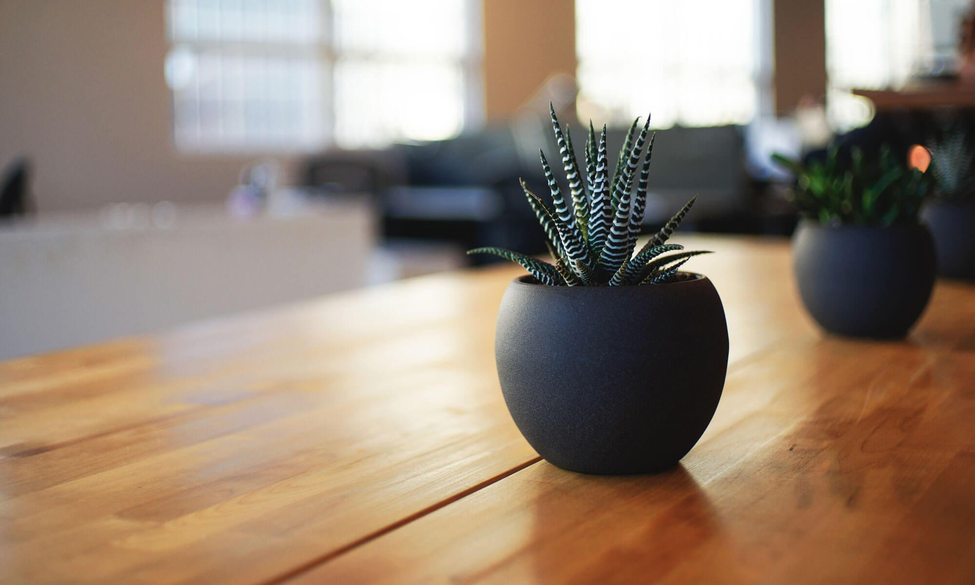 楓空間設計一級建築士事務所